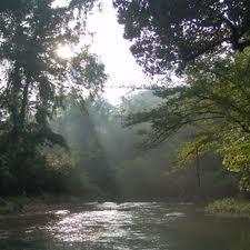 Turkey Creek