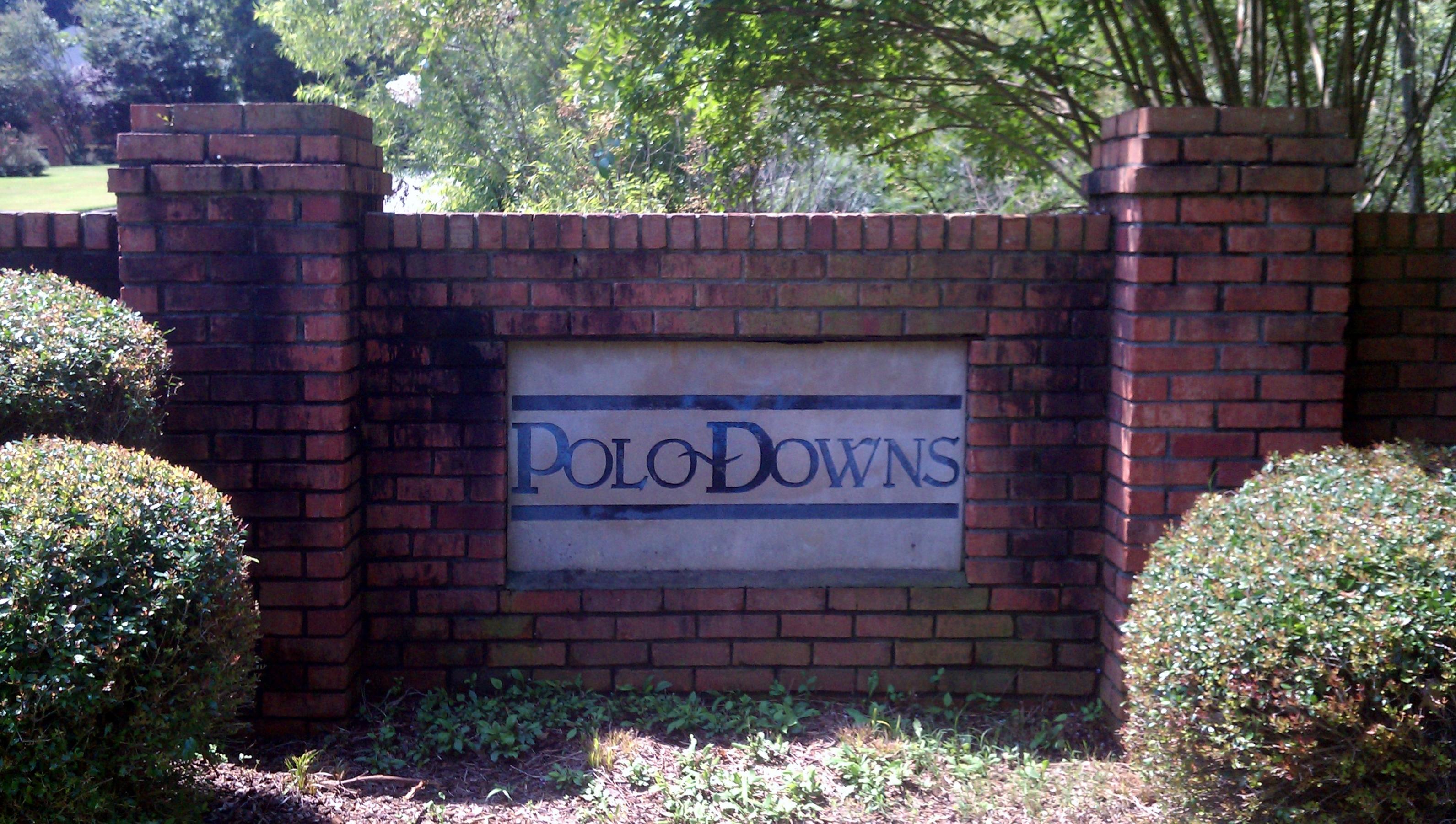 Polo Downs